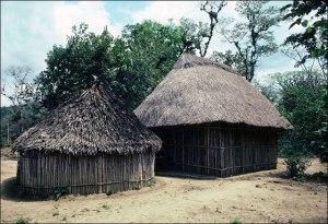 Nahua Houses, 1985