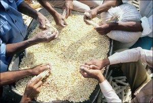 Nahua Men Shelling Corn, 1985